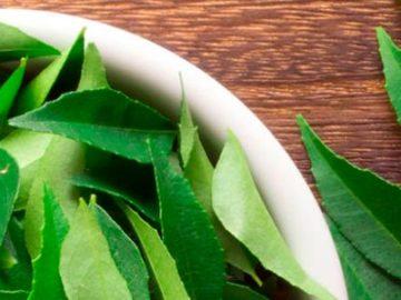 лавровый лист для роста волос