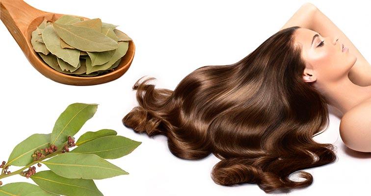 маска для волос с лавровым листом