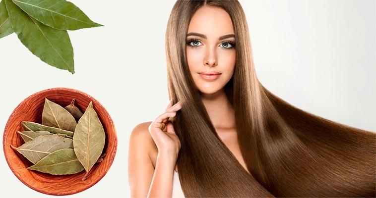 лавровый лист против выпадения волос