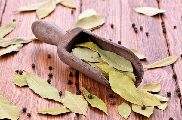 Лечение волос лавровым листом