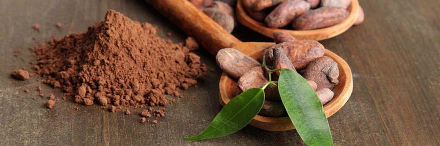какао порошок для волос