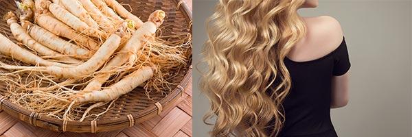 экстракт корня женьшеня для волос