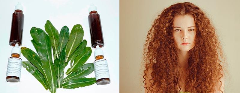 применение масла усьмы для волос