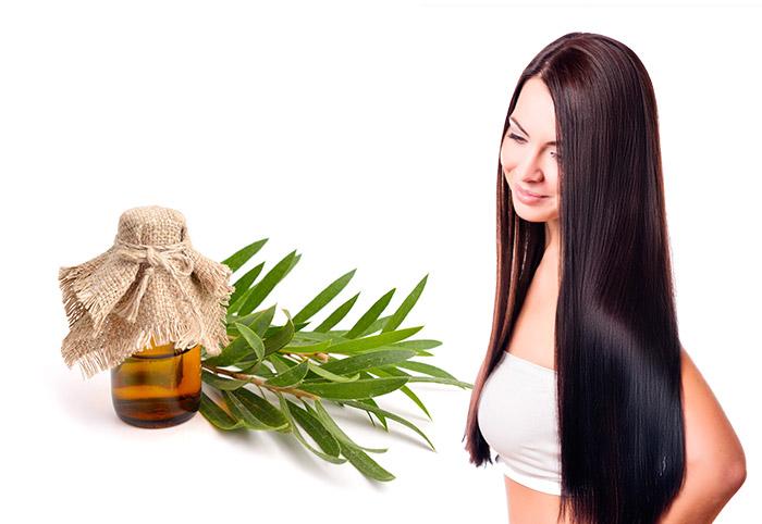 чайное дерево масло для волос польза