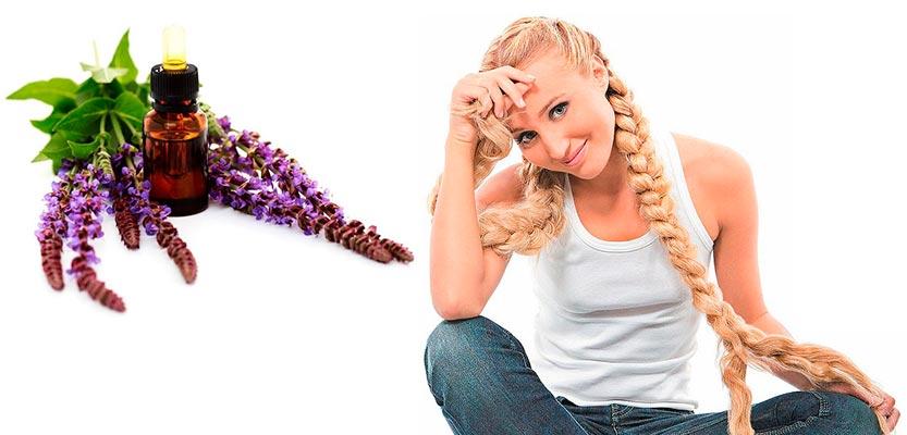 эфирное масло шалфея для волос