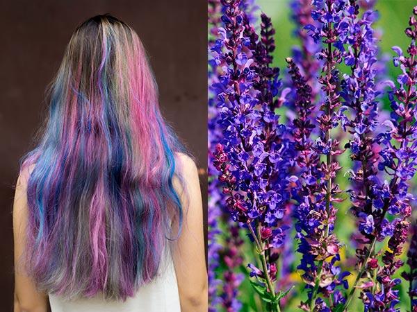 как покрасить волосы шалфеем