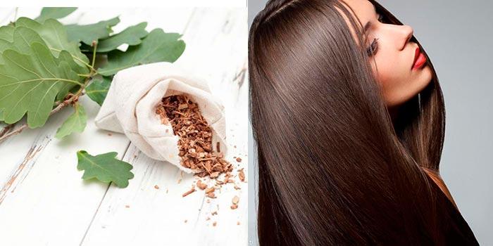полоскать волосы корой дуба