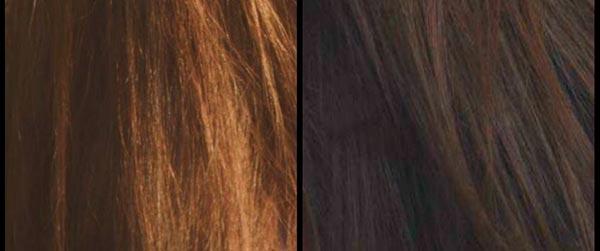 покрасить волосы корой дуба